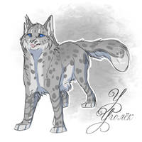 Ashfur by Fox-Desert