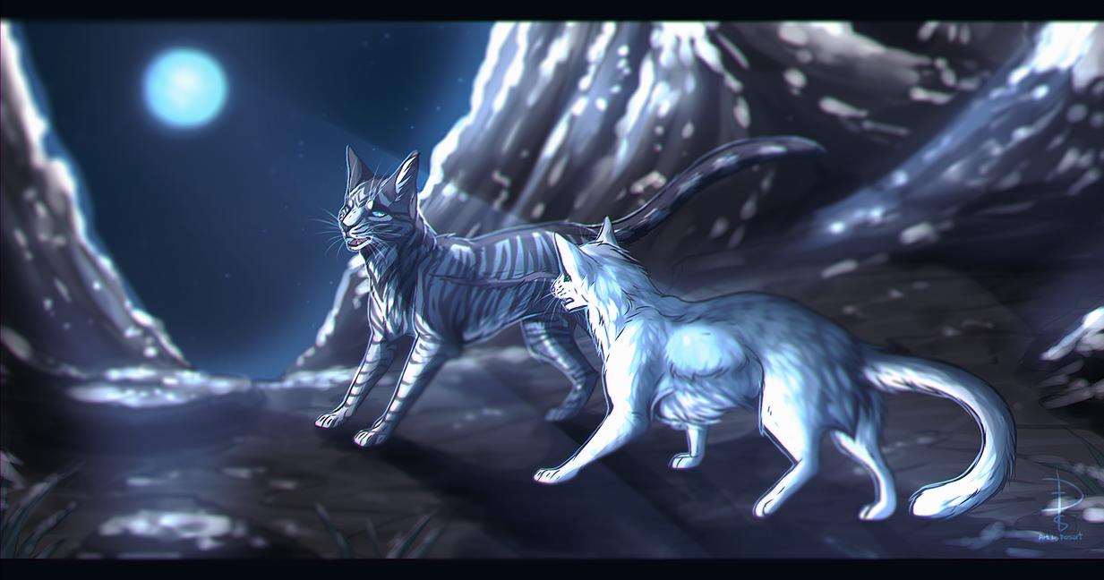 Jayfeather and Half Moon [SPEED PAINT] by Fox-Desert