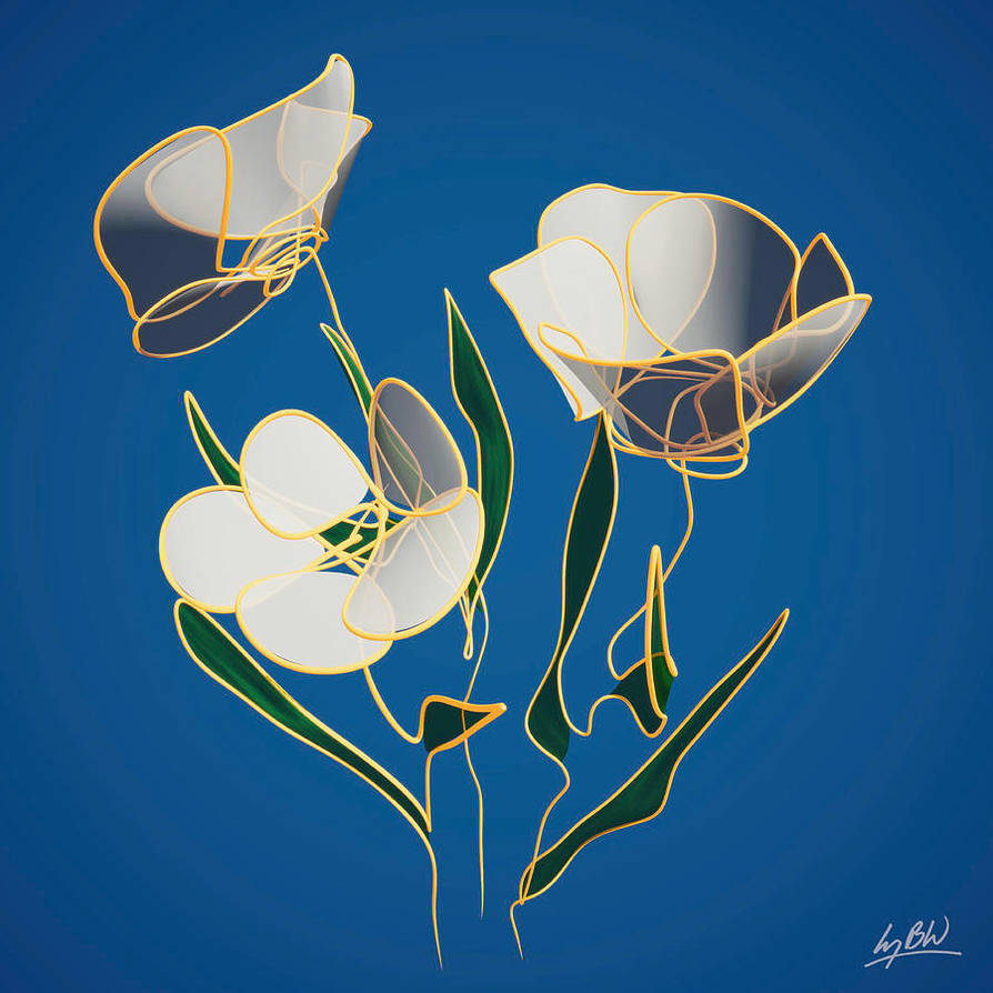 Flowers-line-drawing-5-lucy-boyd-wilson