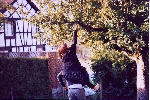 catching birds.