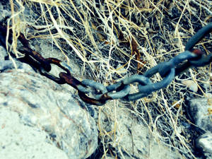 These Chains That Hold Me