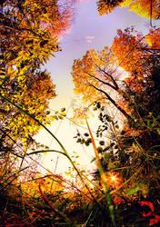 The Last Minutes Of Autumn