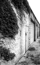 Garage Grown by MrWednesday