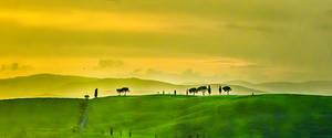 Tuscan Countryside pano #1