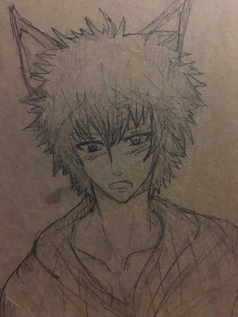 Fox boy by WolfieloveKibalover