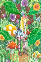 Alice in Fashion Wonderland by frostyshark
