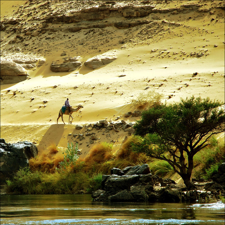 http://th06.deviantart.net/fs71/PRE/i/2011/139/f/3/sunny_days_in_aswan_by_vesnasvesna-d3gp4uy.jpg