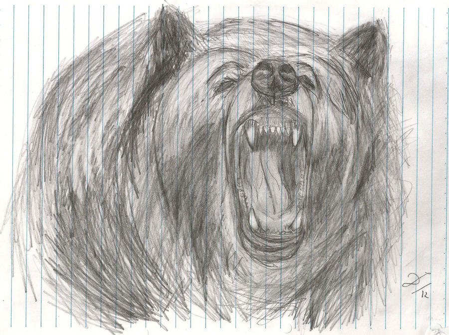 angry grizzly bear by DKMartins on DeviantArt