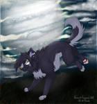 .: Raven :.