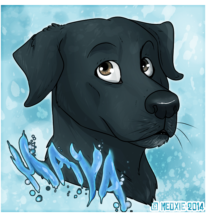 Portrait animalier digital [20€ dont 10€ pour don refuge] ___maya__commish_refuge__by_meoxie-d719yub