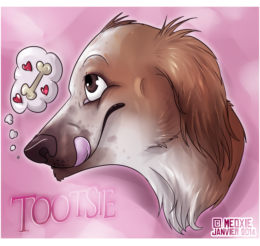 Portrait animalier digital [20€ dont 10€ pour don refuge] ___tootsie__commish_refuge__by_meoxie-d73h2d7