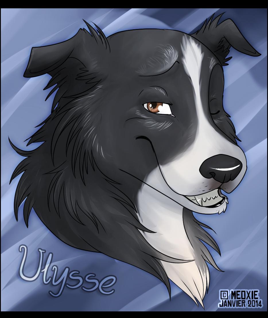 Portrait animalier digital [20€ dont 10€ pour don refuge] Ulysse___ulysse__commish_refuge__by_meoxie-d749bxl