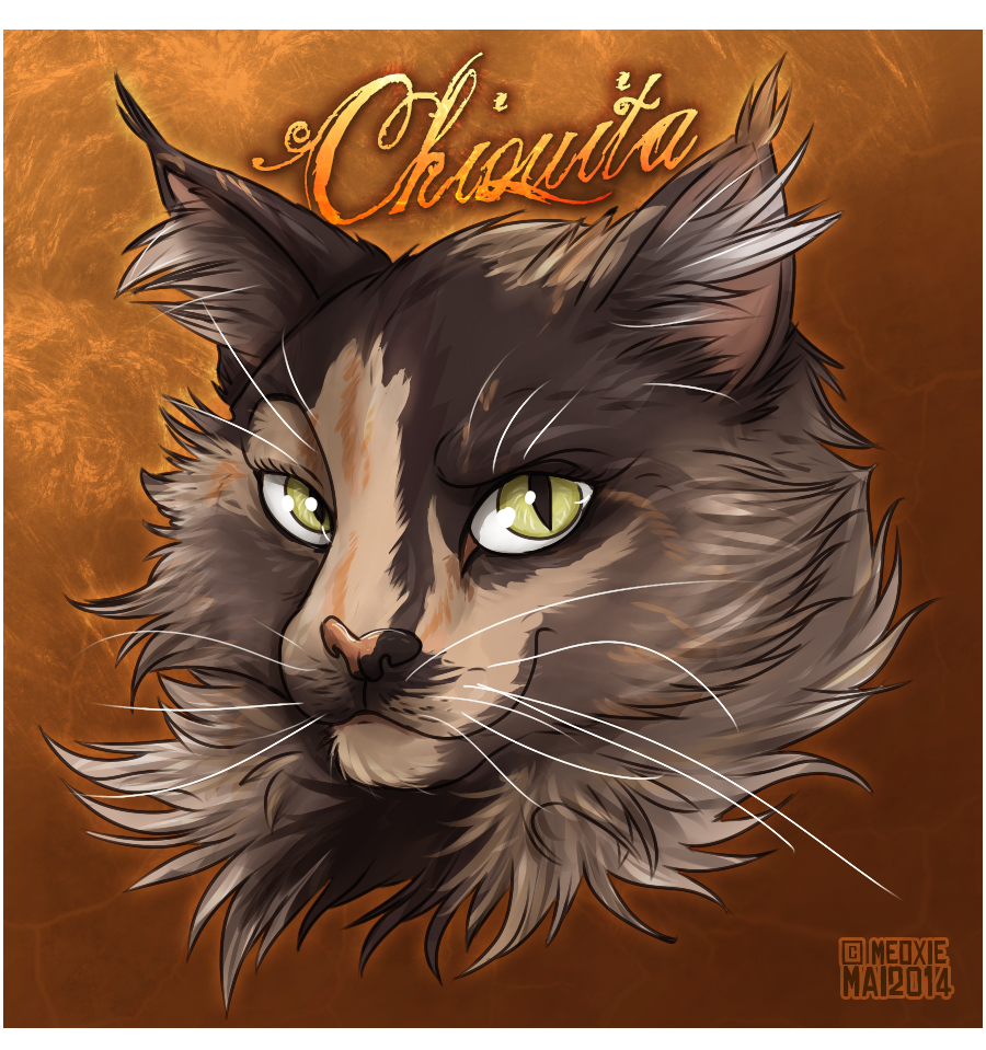 Portrait animalier digital [20€ dont 10€ pour don refuge] ___chiquita__commish_refuge__by_meoxie-d7gu0nw