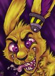 .: Crazy Bunny [COM]