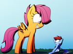 Rainbow Dash's Biggest Fan