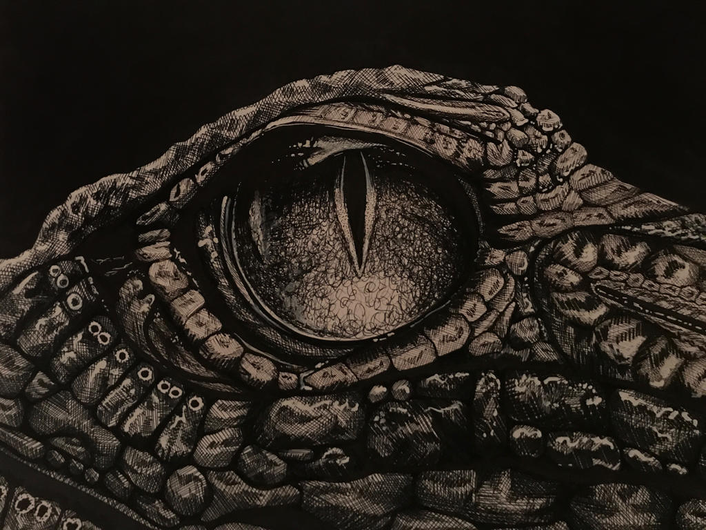 Crocodile eye by marghecaspani