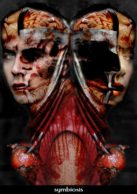 Symbiosis by LennyNero