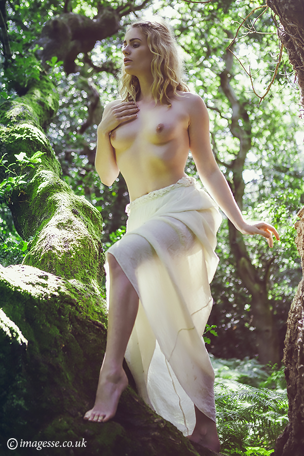dryad's delight by imagesse