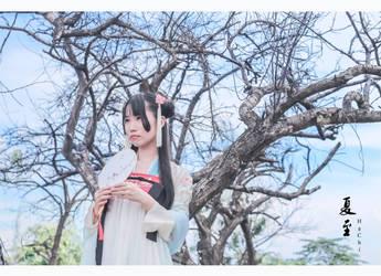 S u m m e r S o l s t i c e by shirayukisei