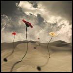 take me where the flowers grow by Simbelmine