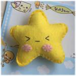 Angry Star Pincushion
