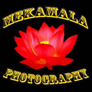 MeKamalaPhotography's Profile Picture