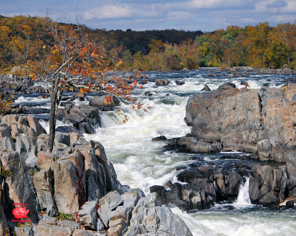 Great Falls, Virginia Waterfall 1 by MeKamalaPhotography