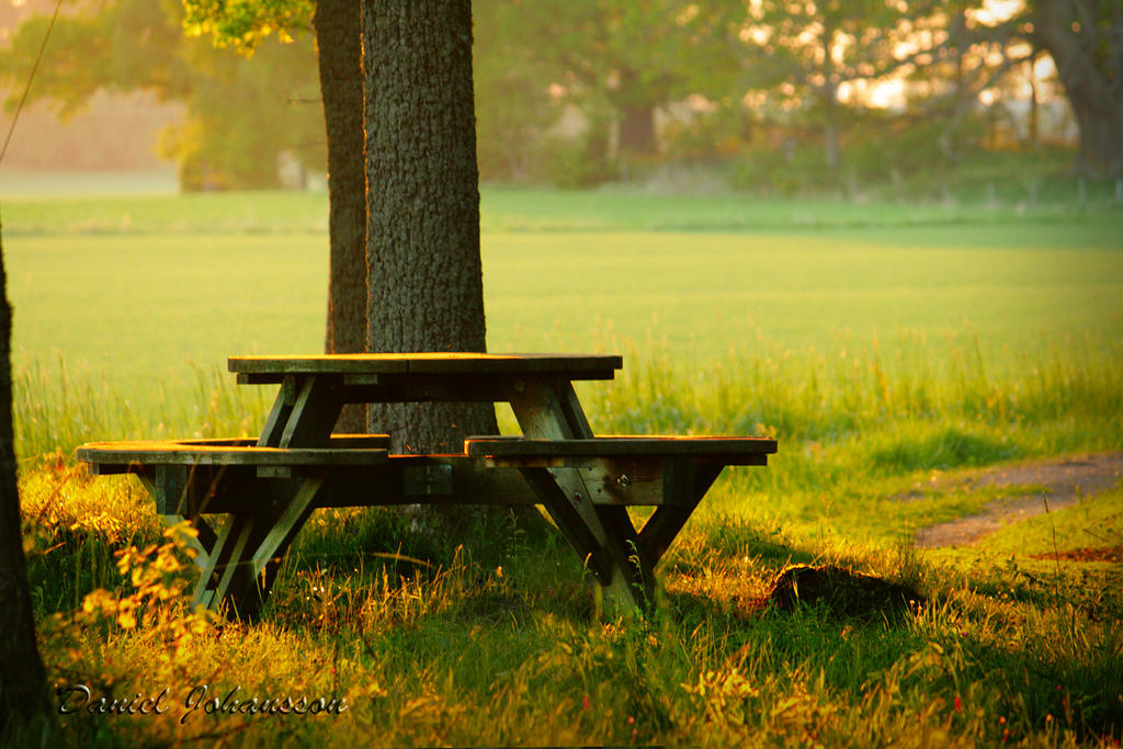 Picnic Table by MisanthropicBastard