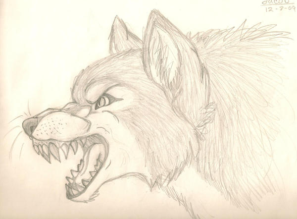 Jacob wolf by caliber13