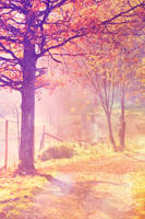 .autumns song. by awphotoart