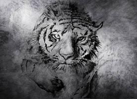 Tiger - Drawing