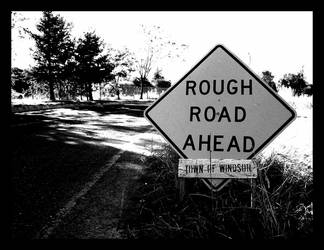 rough road ahead by thelonepenguin