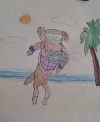 Windjammers Dog