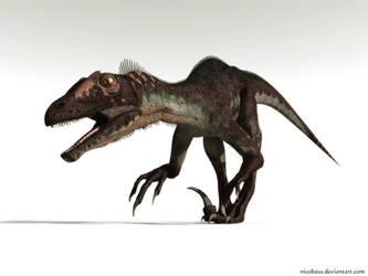 Raptor by Nicobass