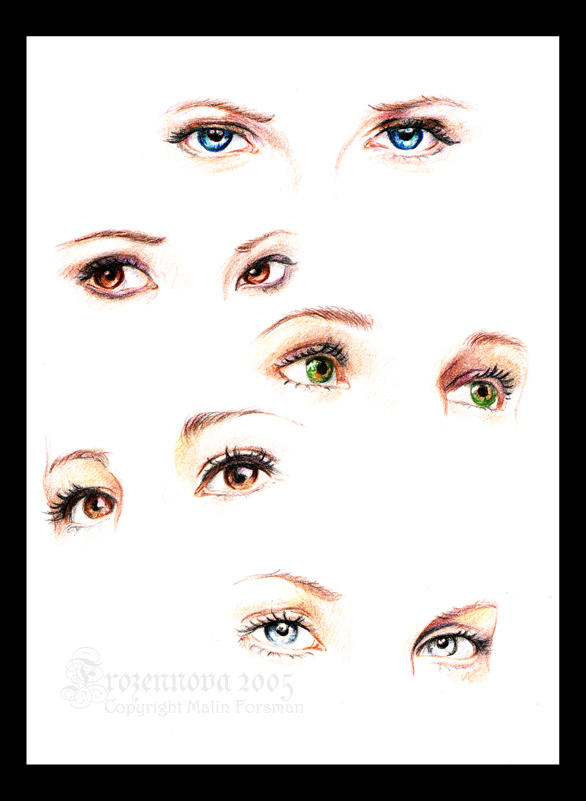 Eyes Study by frozennova