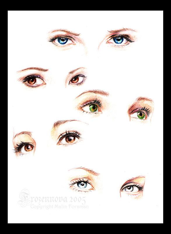 Eyes Study by frozennova