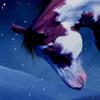 Horsewhisperer avvy by HorseWhisperer101
