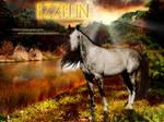 Ezzelin - The Secret