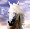 Ave - Avatar by HorseWhisperer101