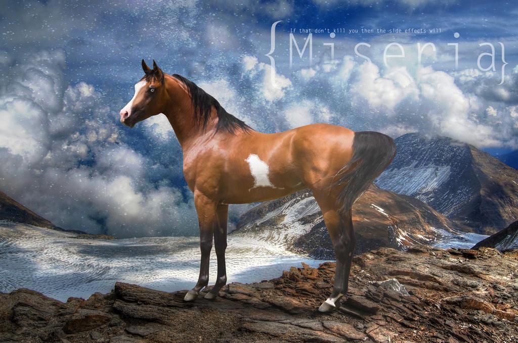 Miseria by HorseWhisperer101