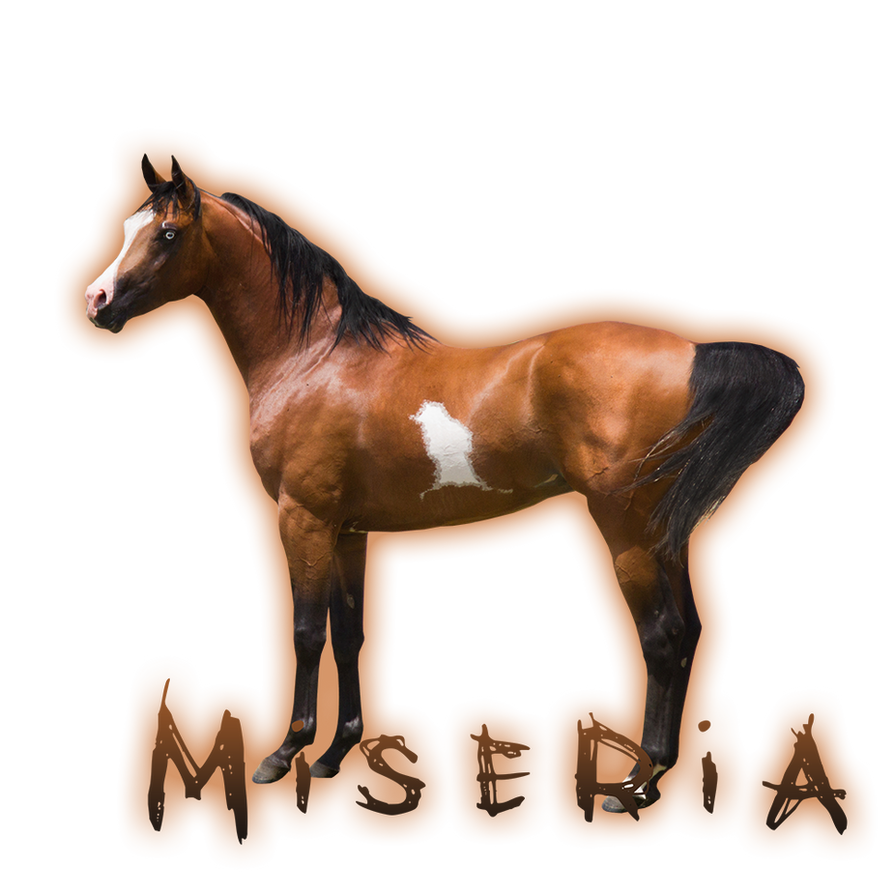 Miseria by HorseWhisperer101