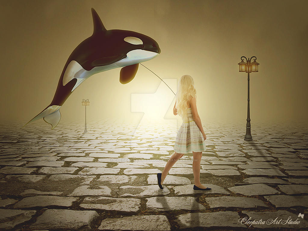 Julices Whale Dream
