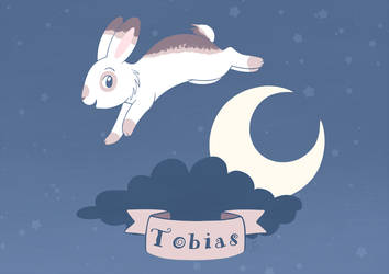 The Night Sky Bunny