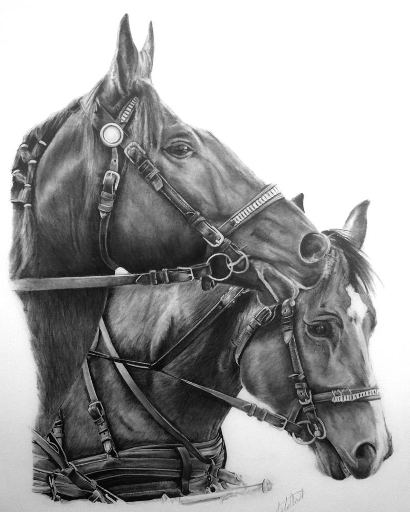 Working Like A Horse by Dhekalia