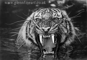 Tiger Swim by Dhekalia