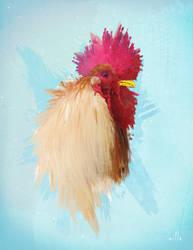 Rooster by Matt-Mills