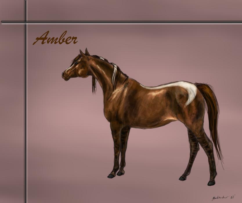 Amber by DA-Horse-Herd