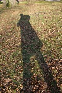 InsanelyCute's Profile Picture