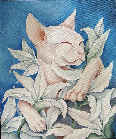 cat by SveteG