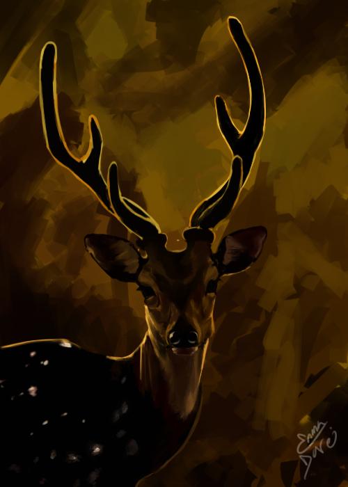 Deer 2 by Enma-Darei